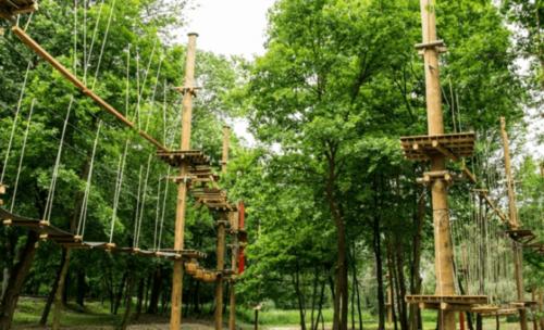 park linowy w uniejowie